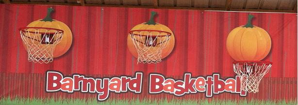 Barnyard Basketball
